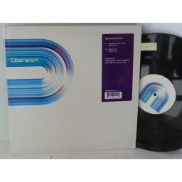 DEFINITE GROOVES nothing like the sound, 12 inch single, 2 tracks, DT010