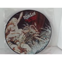 MEAT LOAF dead ringer for love, 7 inch single, picture disc, EPC A 11 1697