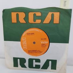 """SOLD : DAVID BOWIE, the jean genie, B side ziggy stardust, RCA 2302, 7"""" single"""