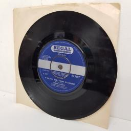 "PROCOL HARUM, quite rightly so, B side in the wee small hours of sixpence, RZ 3007, 7"" single"