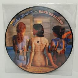 PINK FLOYD - Rare Beauties, side A Blues Scene, Improvisation, Grantchester Meadows, If, side B Time, Brain Damage/Eclipse, Us And Them, One Of These Days, PICTURE VINYL, PF 12007, 12''LP