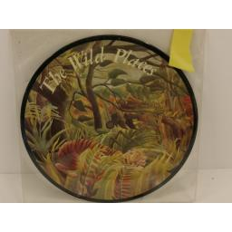 DUNCAN BROWNE the wild places, 7 inch single, picture disc, GO 329