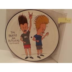 SOLD: NIRVANA, ANTHRAX, BEAVIS AND BUTT HEAD, MEGADETH, RUN DMC, AEROSMITH, WHITE ZOMBIE, PRIMUS, SIR MIX A LOT the beavis and butt head experience, GEF 24613, picture disc