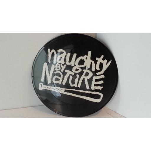 SOLD NAUGHTY BY NATURE o.p.p. Vocal edit. 7inch picture disc.