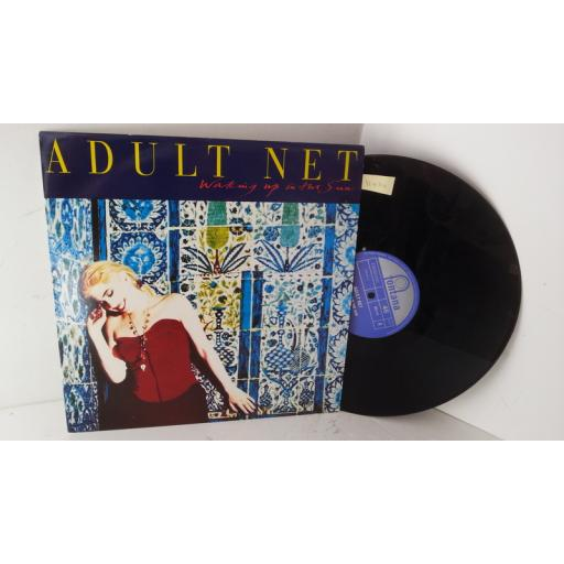 ADULT NET waking up in the sun, 12 inch single, BRX 312