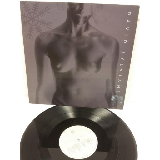 DAVID SYLVIAN pop song, 12 inch single, VST 1221