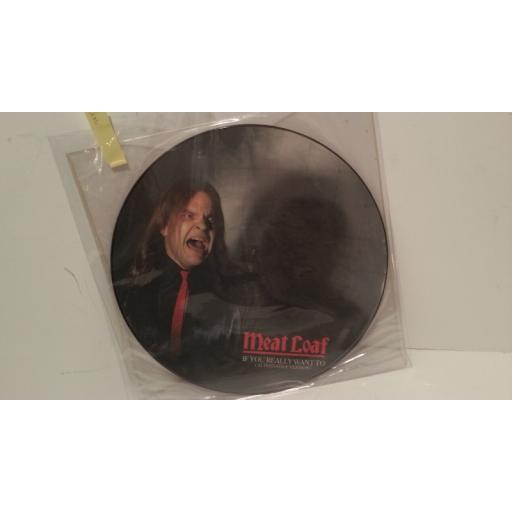 "MEATLOAF if you really want to, 12"" picture disc, WA 3357"
