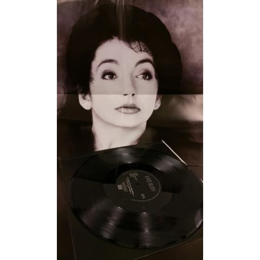 KATE BUSH this woman's work, 12 inch single, limited edition poster sleeve, 12EM 119
