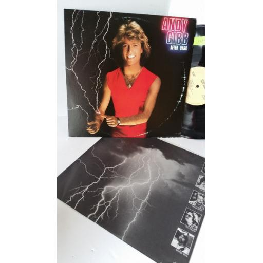 ANDY GIBB after dark, RS-1-3069