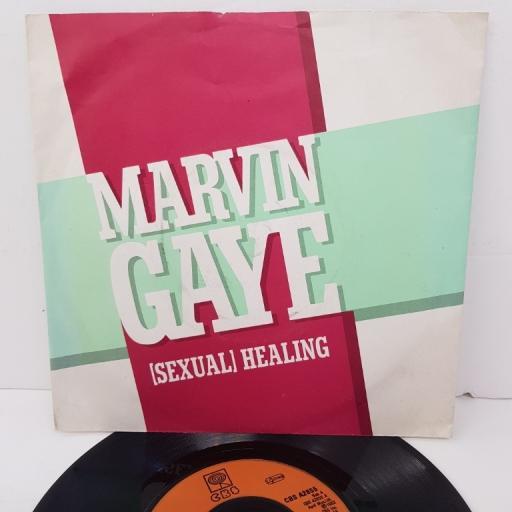 "MARVIN GAYE, (sexual) healing, B side (instrumental), CBS A2855, 7"" single"