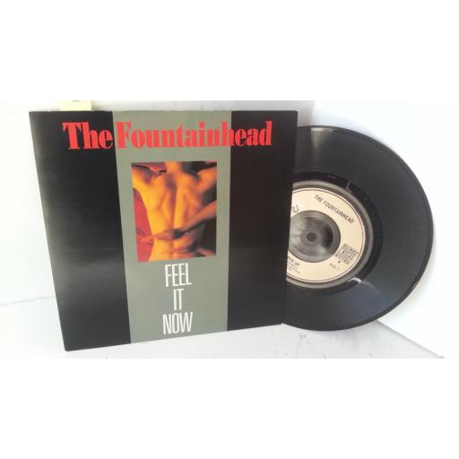 THE FOUNTAINHEAD feel it now, 7 inch single, WOK 7
