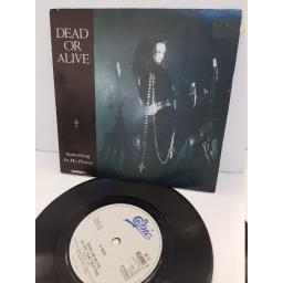 "DEAD OR ALIVE - something in my house. BURNS1, 7"" single"
