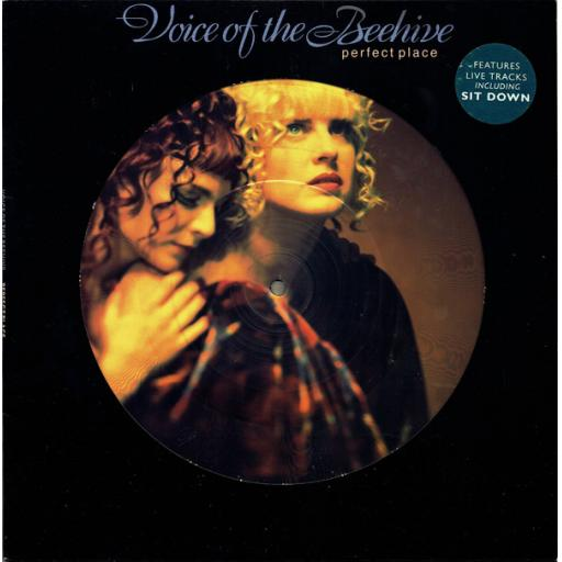 THE VOICE OF THE BEEHIVE Perfect place 10 inch PICTURE DISC. LONT 312