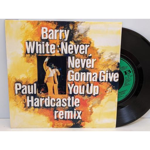 """BARRY WHITE Never never gonna give you up, September when i first met you, 7"""" vinyl SINGLE. JAB59"""
